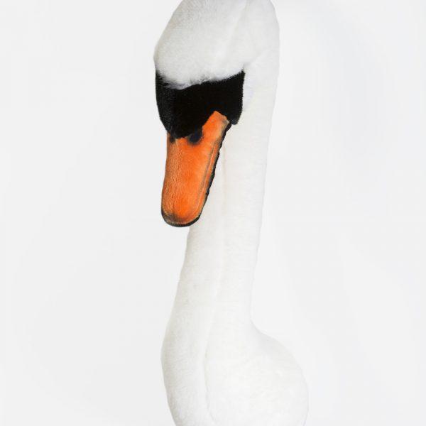 Белый лебедь Джоанна