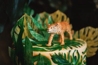 Дикие джунгли!